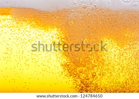 Beer bubbles in the high magnification and close-up.