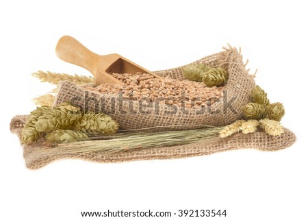 beer ingredients â?? hops, wheat, grain, barley and malt isolated on white