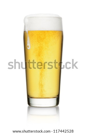 Beer into glass with reflection isolated on a white background - stock photo
