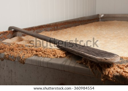 Beer mash into the fermentation vessel and a mixing spatula - stock photo