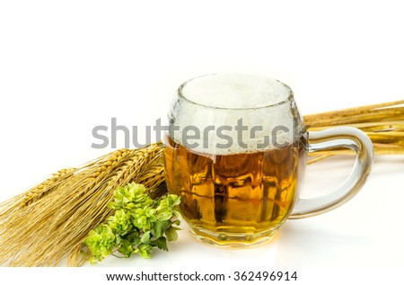 Beer with ears of wheat and Green Hop