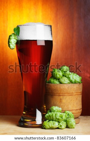 beer with fresh ripe hop still-life - stock photo