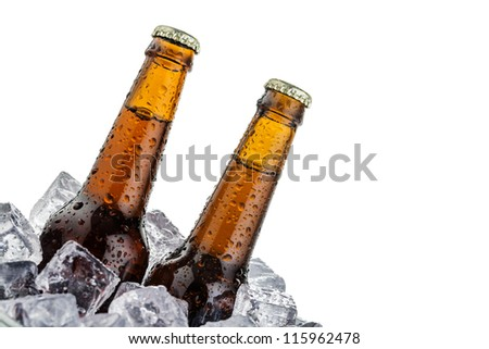 beers on ice with copy space isolated on white background - stock photo