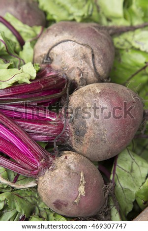 Beetroot Vegetable Background