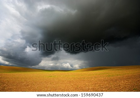 Before the storm, and gold field