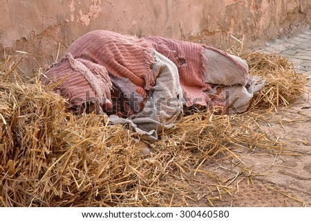 beggar in the ground with straw bales - stock photo