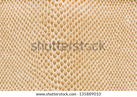 Beige artificial leather snake texture background(Cobra) - stock photo