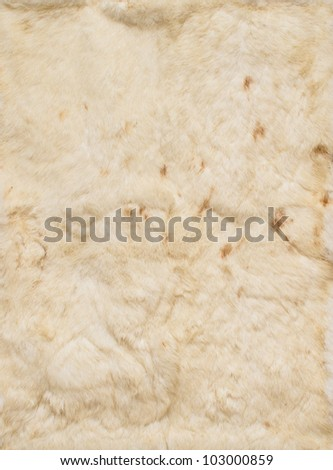 Beige leathers of rabbits, four pieces together