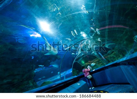 BEIJING, CHINA - MARCH 30: Tourist observes fishes in acrylic underwater tunnel of Blue Zoo on March 30, 2013 in Beijing - stock photo