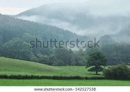 Belgian Ardennes - The foggy landscape of the Ambleve valley in the Ardennes - stock photo
