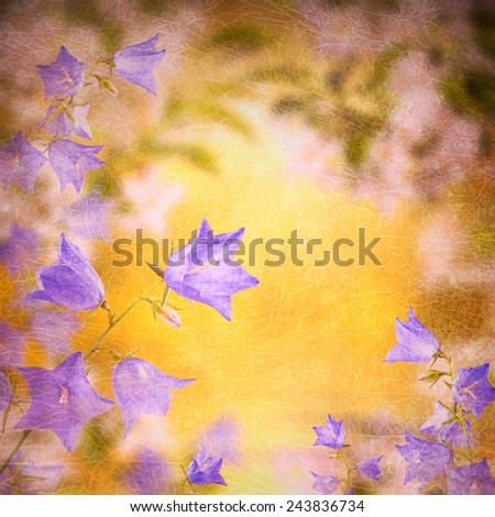 Bell flowers background - stock photo
