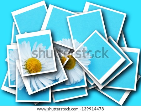 Bellis perennis,collage,daisy in front of colorful background - stock photo