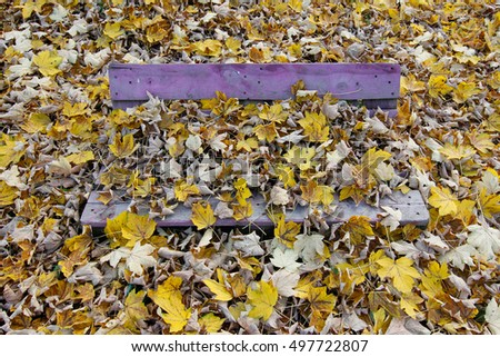 Bench covered in fallen leaves
