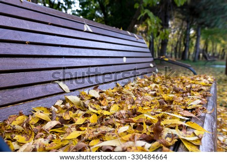 Bench covered with leaves in the park at autumn - stock photo