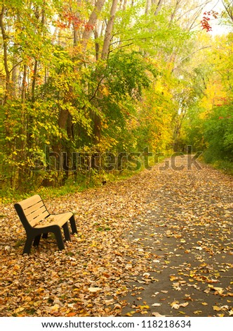 bench in a park in autumn