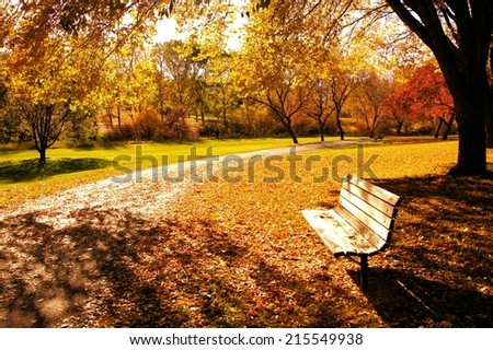 Bench in a park in late day autumn light - stock photo