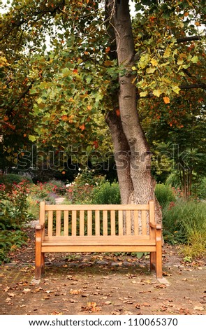 bench in autumn park - stock photo
