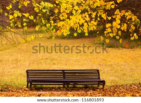 Bench in autumn park.This photo was taken in Kislovodsk, Northern Caucasus,Russia.