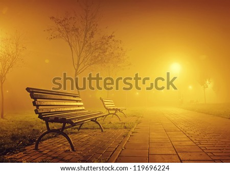 bench in misty park at night - stock photo