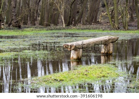 bench in nature area made of wooden tree in overflooded nature park in Holland - stock photo
