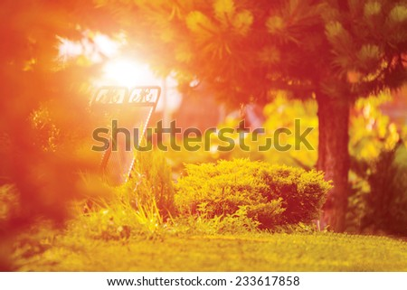 Bench in park during sunset with grass, trees and bushes - stock photo
