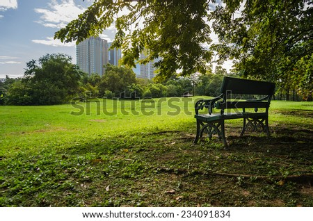 bench in public park with shadow of green tree - stock photo