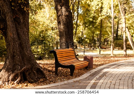 bench in the autumn park