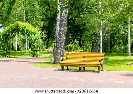 Bench in the local park