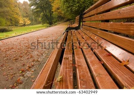 Bench in the park in autumn season - stock photo