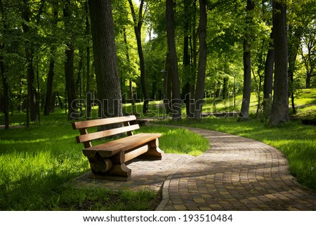 Bench in the summer park with old trees and footpath - stock photo