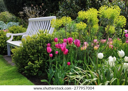 Bench seat in an english garden with shrubs, plants and colourful tulips - stock photo
