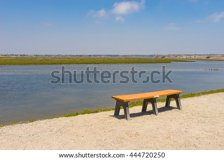 Bench set up above the wetlands and swamp of ocean tidal pool. - stock photo