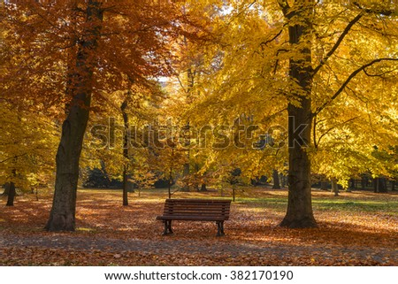 Bench under a autumn tree in the city park of Prague, Czech republic - stock photo