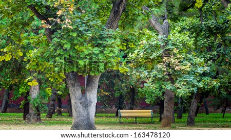 Bench under a tree - stock photo