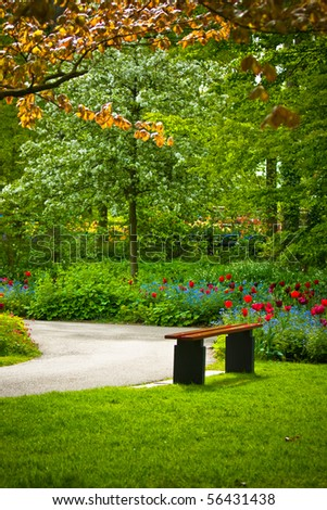 Bench under a tree with flowers in the 'Keukenhof' park in Holland - stock photo