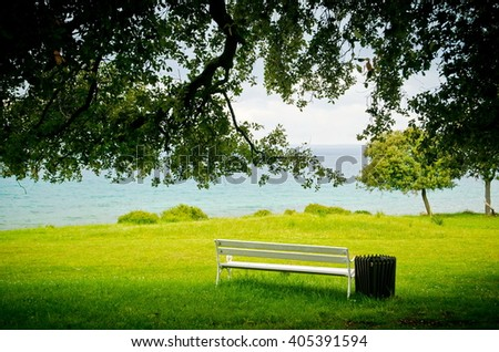 bench under tree. Lonely single park bench or seat in the shade of a flowering dogwood tree in the shadows of the branches.  - stock photo