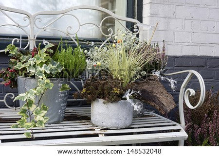 Bench with plants in pot