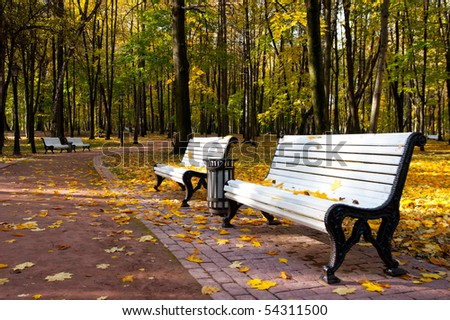 Benches in Idyllic park area - stock photo