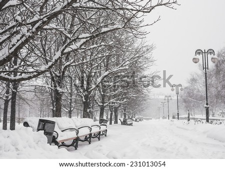 Benches in the winter city park which has been filled up with snow