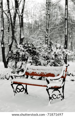 benches in the winter park filled in with the snow - stock photo