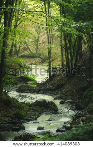 bendy river in green forest - stock photo
