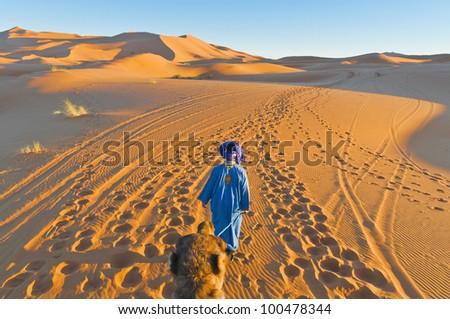Berber walking with camel at Erg Chebbi orange dunes, Morocco - stock photo