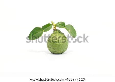 Bergamot and fresh green leaves isolated on white background.
