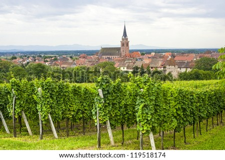 Bergheim (Bas-Rhin, Alsace, France) Panoramic view with vineyards at summer - stock photo