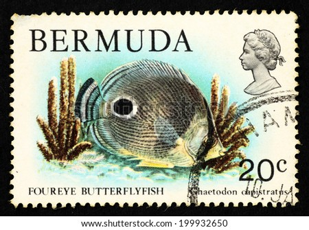 BERMUDA - CIRCA 1979: Postage stamp printed in Bermuda with image of a Foureye Butterflyfish for the Bermuda Wildlife Definitive series Part III. - stock photo