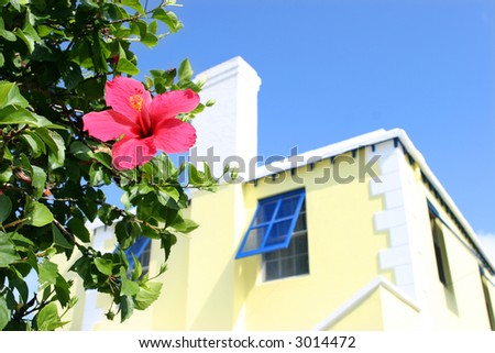Bermuda Home - stock photo