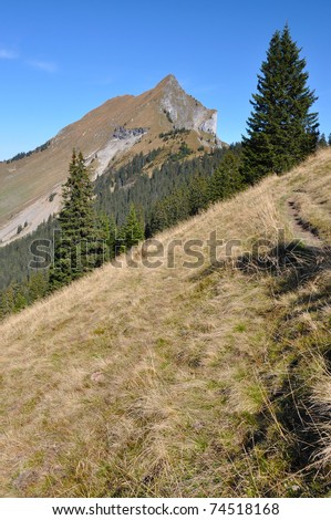 Bernese alps (Suggiture 2085 m) in autumn, canton of Bern, Switzerland