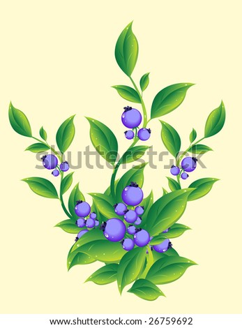 Berries - stock photo