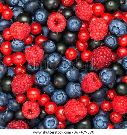 Berries Background.  Blueberry, Raspberries, black currant, red currant