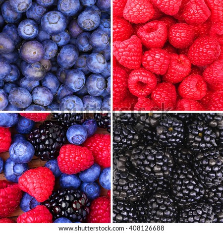 Berries Background Collection. Raspberry, Blueberry and Blackberry